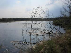 Федоро-Савинский